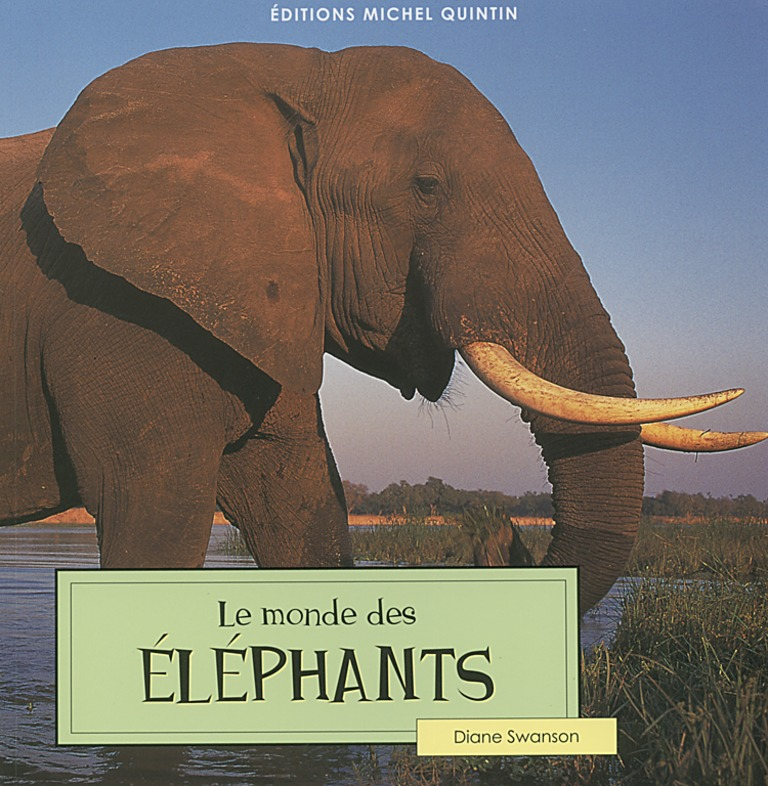 Le monde des éléphants