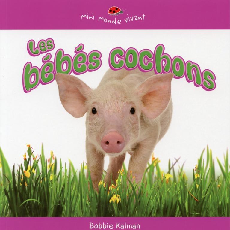 Les bébés cochons