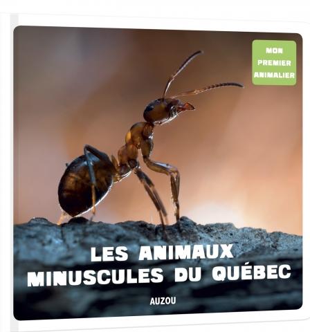 Les animaux minuscules du Québec.