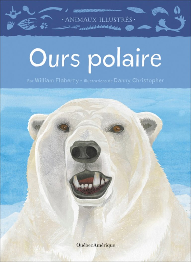 Ours polaire